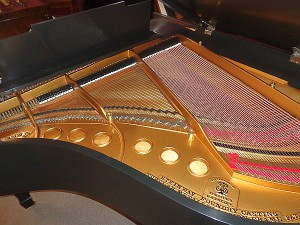 Steinway Baby Grand Piano for Sale in Montgomery, AL - Refinished Plate & New Strings